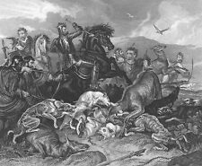 HUNTING FIGHT HOUND DOGS & STAG DEER SWORD FIGHT ~ Old 1876 Art Print Engraving