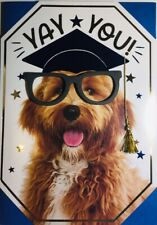 3D Graduation American Greetings  Dog BEAUTIFUL CARD