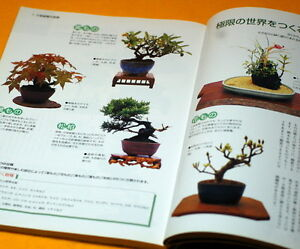 Let's start SMALL BONSAI Interior BOOK Japanese from Japan rare #0032
