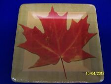 """Autumn Hues Fall Leaves Thanksgiving Banquet Party 7"""" Square Paper Dessert Plate"""