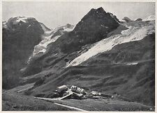 D2480 Sottostelvio - Ghiacciaio dell'Ortles - Stampa d'epoca - 1925 old print