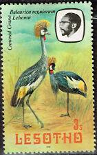 Lesotho Fauna Birds Crowned Crane stamp 1981 MLH