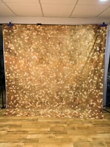 8x8 Photography Backdrop by Denny Freedom Cloth -- HOLIDAY Gold Sparkle