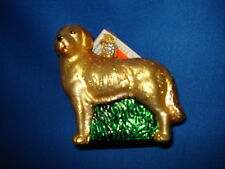 Dog Ornament Glass Golden Retriever Old World Christmas 12203 25