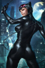 Catwoman Movie Fabic Silk Poster 13*20in Wall Home Decor 003
