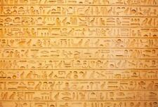 LFEEY 10x8ft Wall Hieroglyphs Photo Backdrop Ancient Egypt Antiquity