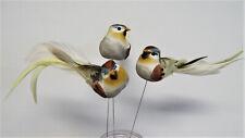 3 wunderschöne Deko Vögel am Draht Tropen Dekovogel Dekoration Vogel Bird