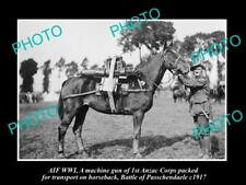 OLD 8x6 HISTORIC PHOTO WWI ANZAC CORPS MACHINE GUN HORSE PASSCHENDAELE c1917