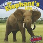 NEW An Elephant's Life (Living Large) by Sara Antill