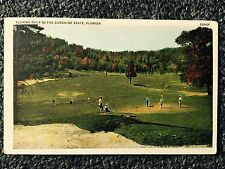 1937 Playing Golf in the Sunshine State. Florida Postcard
