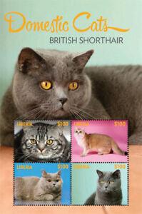 Liberia - 2014 - DOMESTIC CATS BRITISH SHORTHAIR - Sheet of 4 - MNH