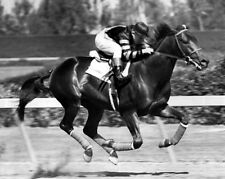 Triple Crown Racehorse WAR ADMIRAL Glossy 8x10 Photo Print Charles Kurtsinger