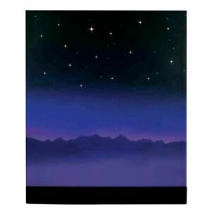 Lemax Christmas Village Starry Night Background Lighted Backdrop 64078