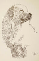 Great Pyrenees Dog Art Lithograph #78 Stephen Kline will draw dogs name free.