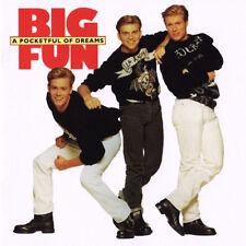 Big Fun : A Pocketful of Dreams CD (2010) ***NEW***
