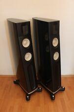 Raidho C2 Standlautsprecher - Speakers