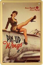 Blechschild 20x30 Flugzeug pin up Wings Erotik Girl Bar Werkstatt Metall Schild