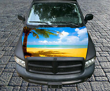 H104 PLAM TREE TREES Hood Wrap Wraps Decal Sticker Tint Vinyl Image Graphic