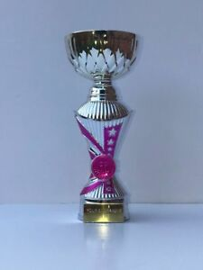 240mm Astro All Star Heavyweight Cup Silver & Pink DANCE/BALLET free engraving