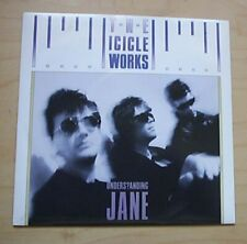 "ICICLE WORKS UNDERSTANDING JANE 7"" P/S UK"