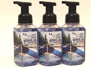 NEW 3 BATH & BODY WORKS CRISP MORNING AIR GENTLE FOAMING HAND SOAP WASH 8.75 OZ