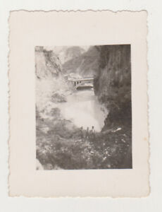 Several Shirtless Guys and Beautiful Landscape Bridge Gay Int 1920s Old Photo