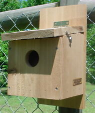House Finch bird house