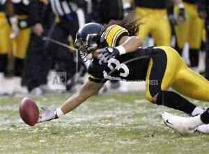 Troy Polamalu All New Diving Interception Unsigned Licensed 11x14 Photo