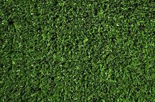 NEW 9mm pile Synthetic/Artificial Grass Off Cut - 7m x 1.1m Australian made