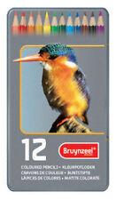 Bruynzeel Artistes Crayon de couleur étain Lot de 12 différentes couleurs