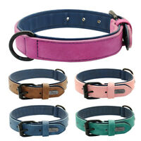 Soft Padded Leather Dog collar for Puppy Small Medium Large Dogs 5 Colors S-2XL