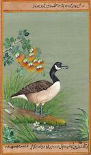 Canada Goose Painting Handmade Indian Miniature North American Wild Bird Art