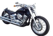 ZRide Gabelcover Yamaha XVS 650 Dragstar Fork Shrouds Set