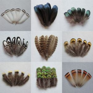 Natural Pheasant Rooster Feathers Chicken Fascinator Costume Crafts