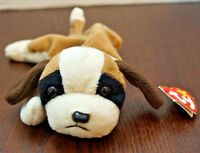 Ty Beanie Baby BERNIE Dog  w/ Tag ERRORS Plush Toy RARE PVC NEW RETIRED Nurnberg