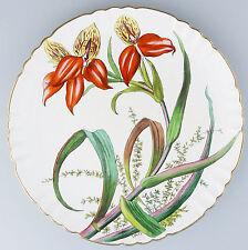 Minton Antique English Porcelain  a beautiful Botanical Plate C3108 C.19thC