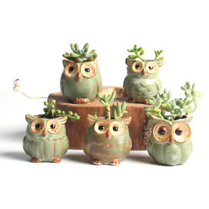 US 5x Mini Ceramic Plant Pot Owl Succulent Flower Planter Bonsai Box Home Garden