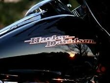 NEW HARLEY  DAVIDSON STREETGLIDE TOURING TANK EMBLEMS MEDALLIONS NAME PLATES