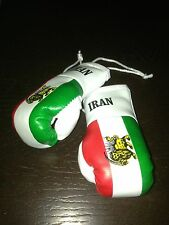 IRAN IRANIAN NATIONAL COUNTRY FLAG MINI BOXING GLOVES ORNAMENT BRAND NEW