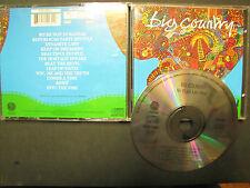 Big Country - No Place Like Home / Vertigo 1991 RARE CD