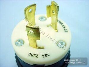 Hubbell Bryant Industrial Twist Locking Plug NEMA L6-30P 30A 250V 70630NP Bagged