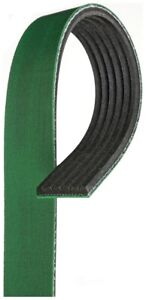 Serpentine Belt   Gates   K060795HD