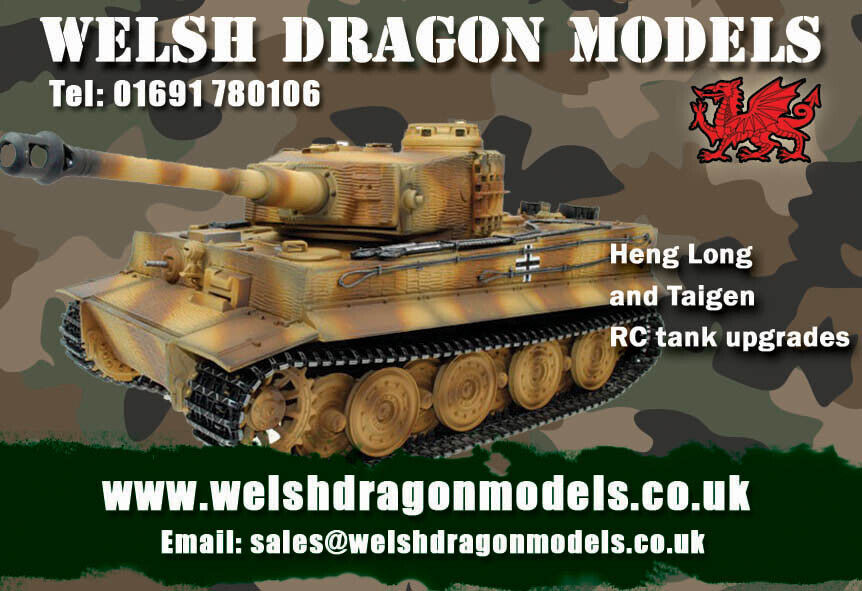Welsh Dragon Models
