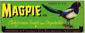 GENUINE CRATE LABEL VINTAGE MAGPIE SONGBIRD 1950S TRACY FRUIT TYPOGRAPHY BIRD B3