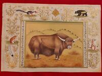 Hand Painted Yak Animal Miniature Painting India Art Nature on Paper Rice
