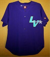 Las Vegas Stars Ethan Faggett #6 Purple Game Worn Minor League Baseball Jersey