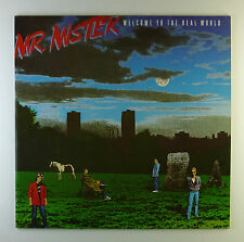 """12"""" LP-MR MISTER-Welcome to the real world-a2830-Slavati & cleaned"""