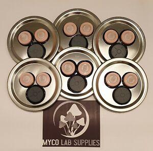 x6 Mycology/mushroom Growing Mason Jar Lid, Syringe Filter+Self Heal Injector