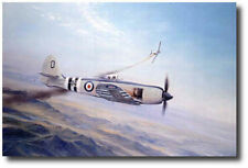 Sea Fury by Robert Taylor - MiG-15 - Aviation Art Print - Signed