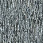 """Open Air """"Gray Tree Bark""""-Quilting Treasures-BTY"""
